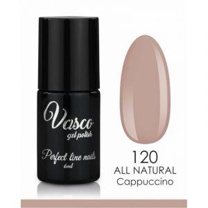 Vasco gel polish 6ml - 120